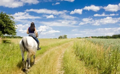 passeio-a-cavalo